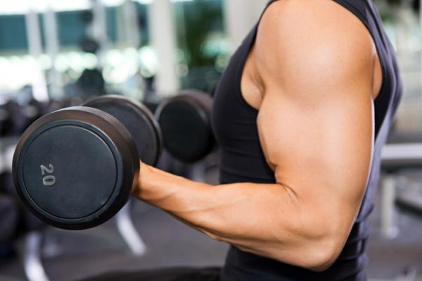 workout bicep and tricep