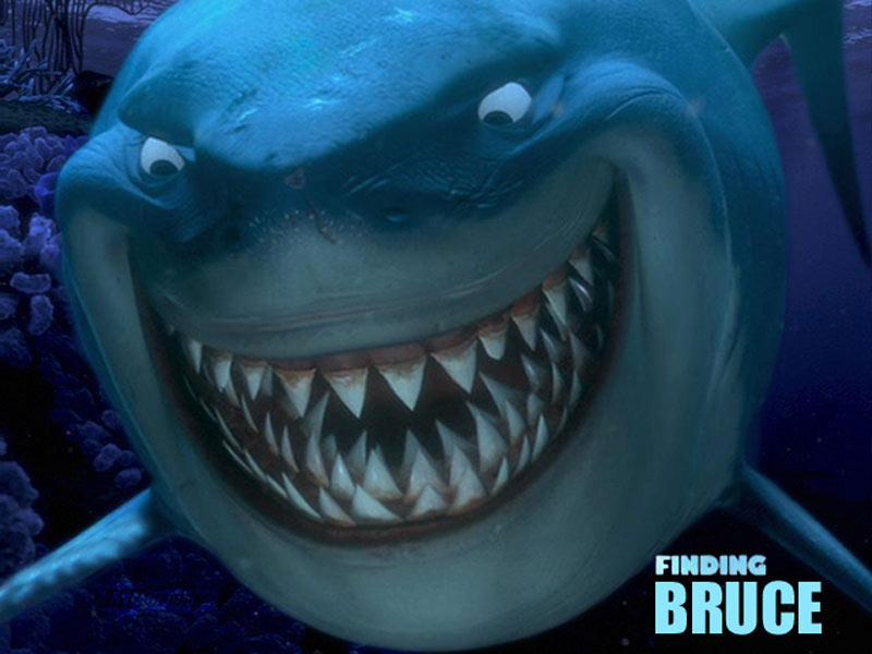 bruce-shark.jpg