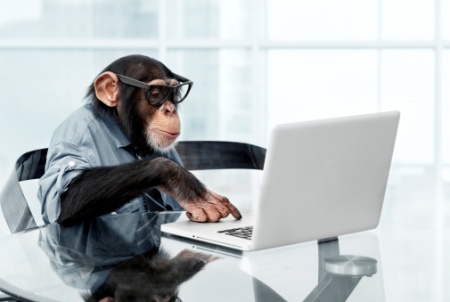 RF getty monkey