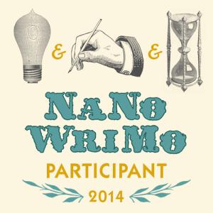 NANO Participant-2014