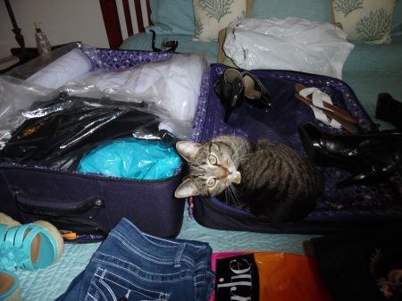 Packing is always a challenge.