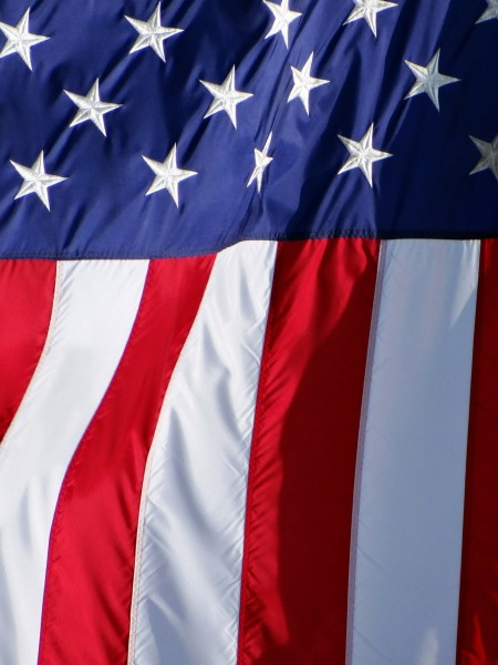 american-71236_1280 -pixabay